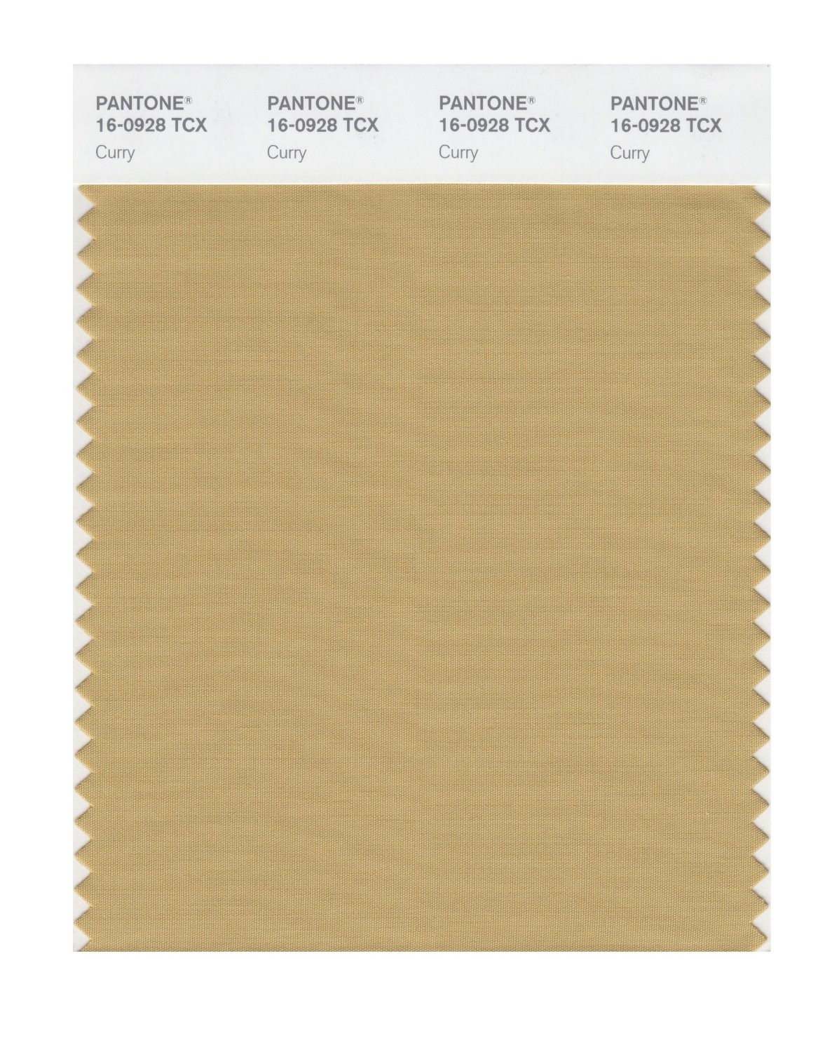 Pantone 16-0928 TCX Swatch Card Curry
