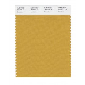 Pantone 16-0950 TCX Swatch Card Narcissus