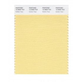 Pantone 12-0826 TCX Swatch Card Golden Haze