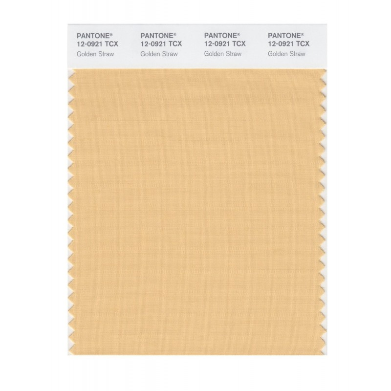 Pantone 12-0917 TCX Swatch Card Bleach Apricot
