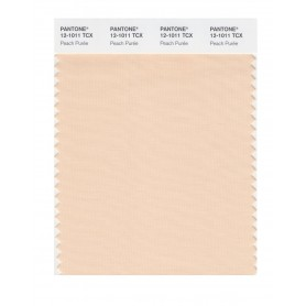Pantone 12-1011 TCX Swatch Card Peach Puree