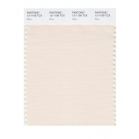 Pantone 12-1108 TCX Swatch Card Dew