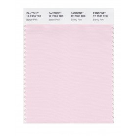 Pantone 12-2906 TCX Swatch Card Barely Pink