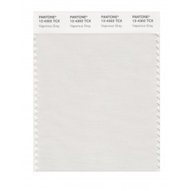 Pantone 12-4302 TCX Swatch Card Vaporous Gray