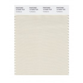Pantone 12-5202 TCX Swatch Card Turtledove