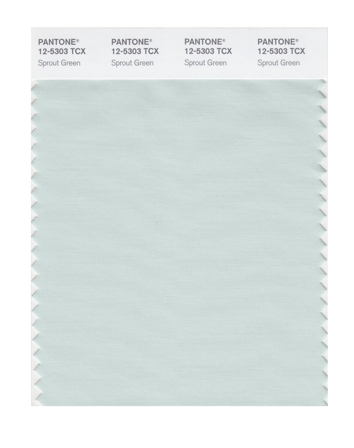 Pantone 12-5303 TCX Swatch Card Sprout Green
