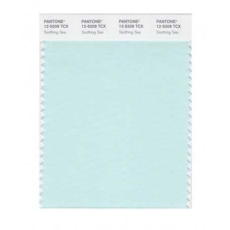 Pantone 12-5204 TCX Swatch Card Morning Mist