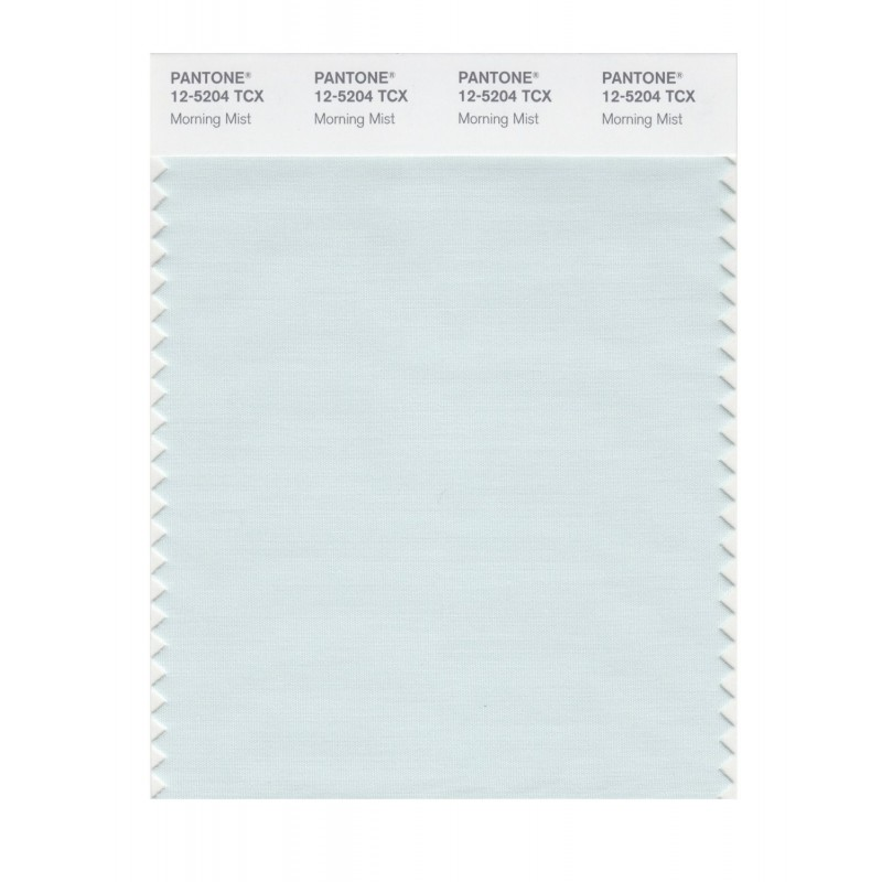 Pantone 12-4805 TCX Swatch Card Wan Blue