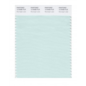 Pantone 12-5408 TCX Swatch Card Moonlight Jade