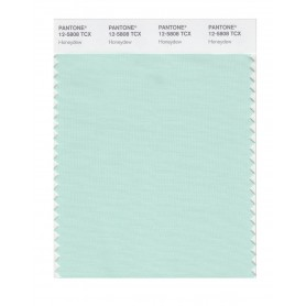 Pantone 12-5808 TCX Swatch Card Honeydew