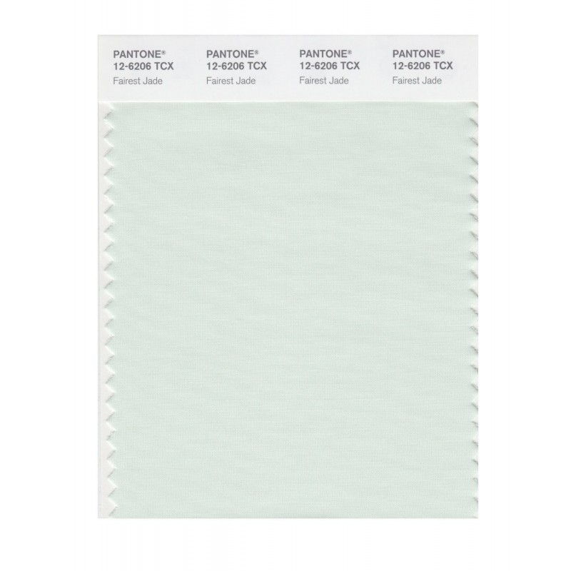 Pantone 12-6204 TCX Swatch Card Silver Green