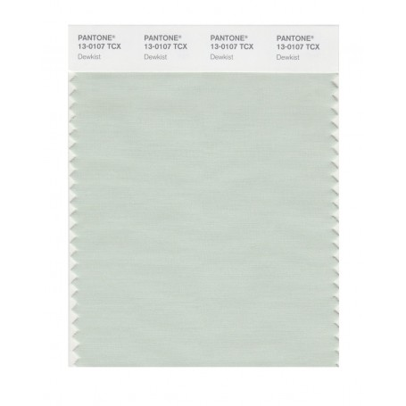 Pantone 13-0000 TCX Swatch Card Moonbeam