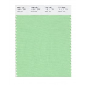 Pantone 13-0117 TCX Swatch Card Green Ash