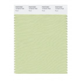 Pantone 13-0215 TCX Swatch Card Reed