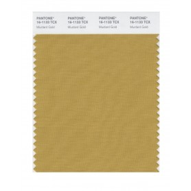 Pantone 16-1133 TCX Swatch Card Mustard Gold