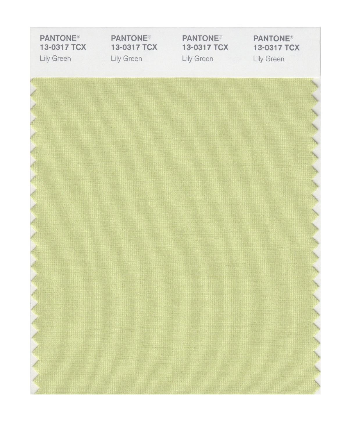 Pantone 13-0317 TCX Swatch Card Lily Green