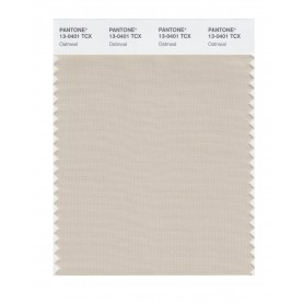 Pantone 13-0401 TCX Swatch Card Oatmeal