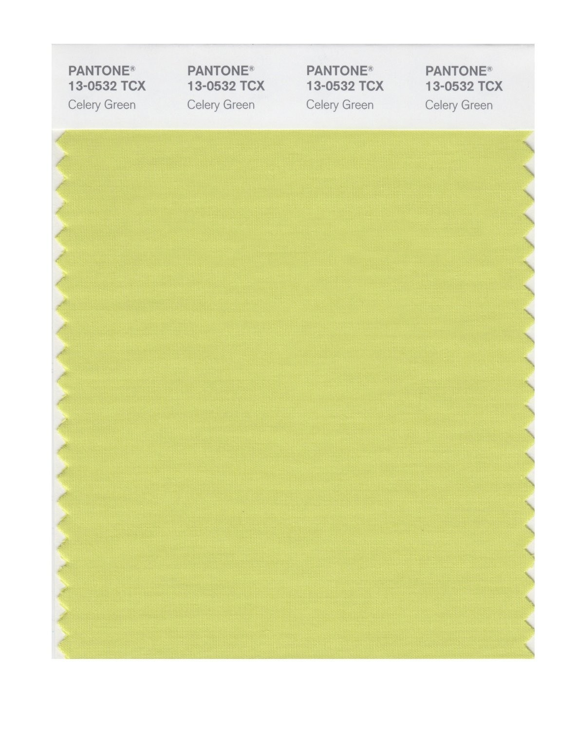 Pantone 13-0532 TCX Swatch Card Celery Green