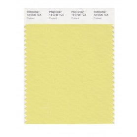Pantone 13-0720 TCX Swatch Card Custard