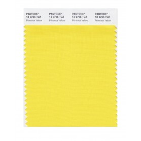 Pantone 13-0755 TCX Swatch Card Primrose Yellow