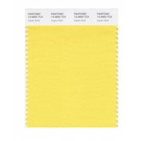 Pantone 13-0850 TCX Swatch Card Aspen Gold