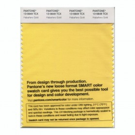 Pantone 13-0849 TCX Swatch Card Habanero Gold