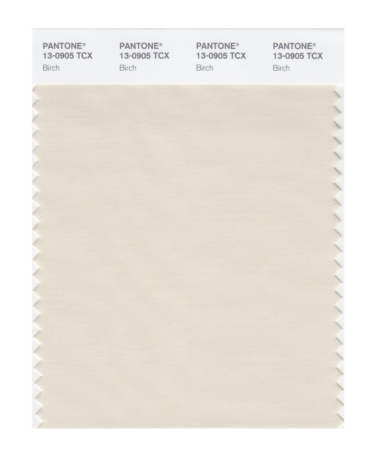 Pantone 13-0905 TCX Swatch Card Birch