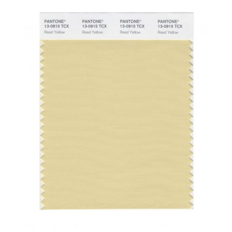Pantone 13-0859 TCX Swatch Card Lemon Chrome