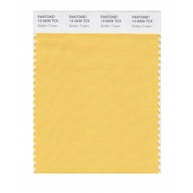 Pantone 13-0939 TCX Swatch Card Golden Cream