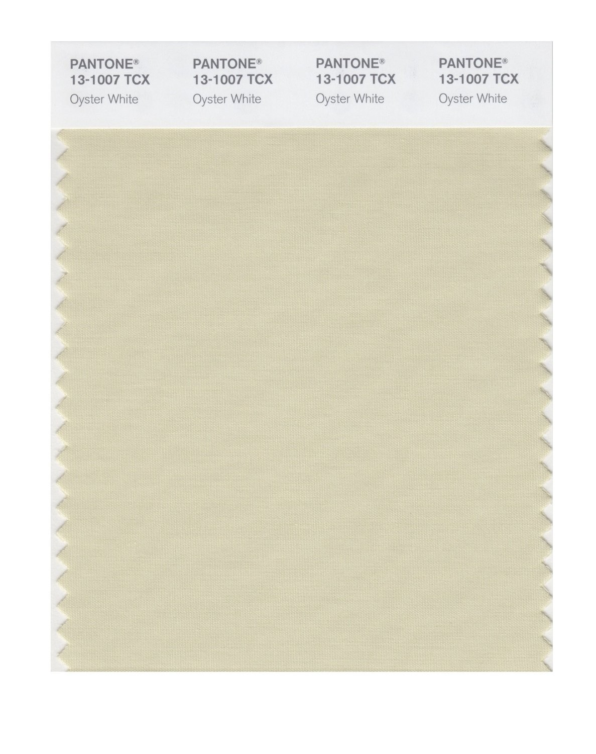 Pantone 13-1007 TCX Swatch Card Oyster White