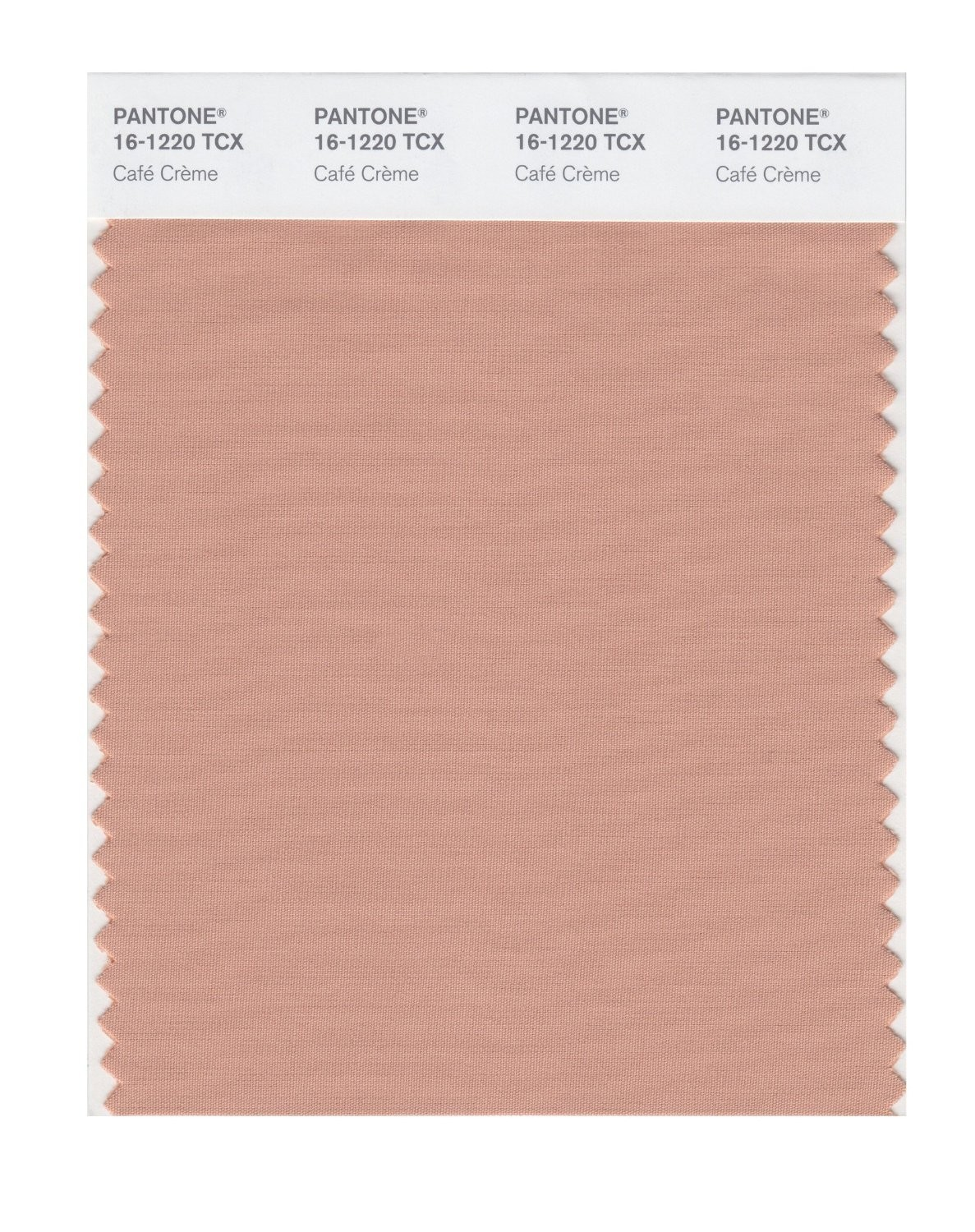 Pantone 16-1220 TCX Swatch Card Cafe Creme