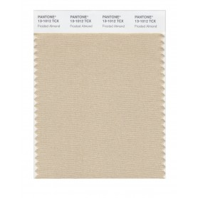 Pantone 13-1012 TCX Swatch Card Frosted Almond