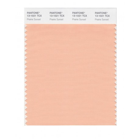 Pantone 13-1019 TCX Swatch Card Cream Blush
