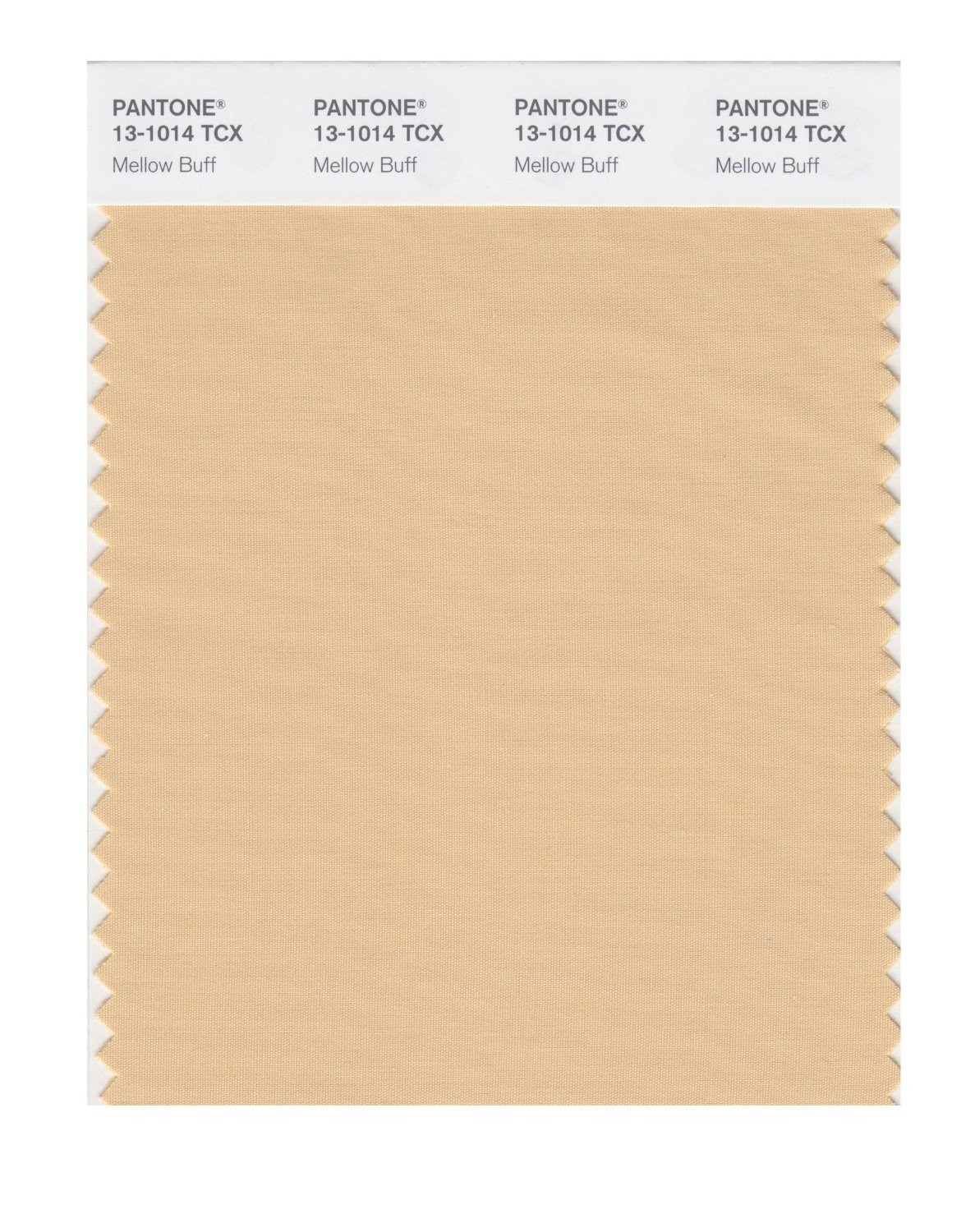 Pantone 13-1014 TCX Swatch Card Mellow Buff
