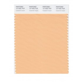 Pantone 13-1022 TCX Swatch Card Caramel Cream