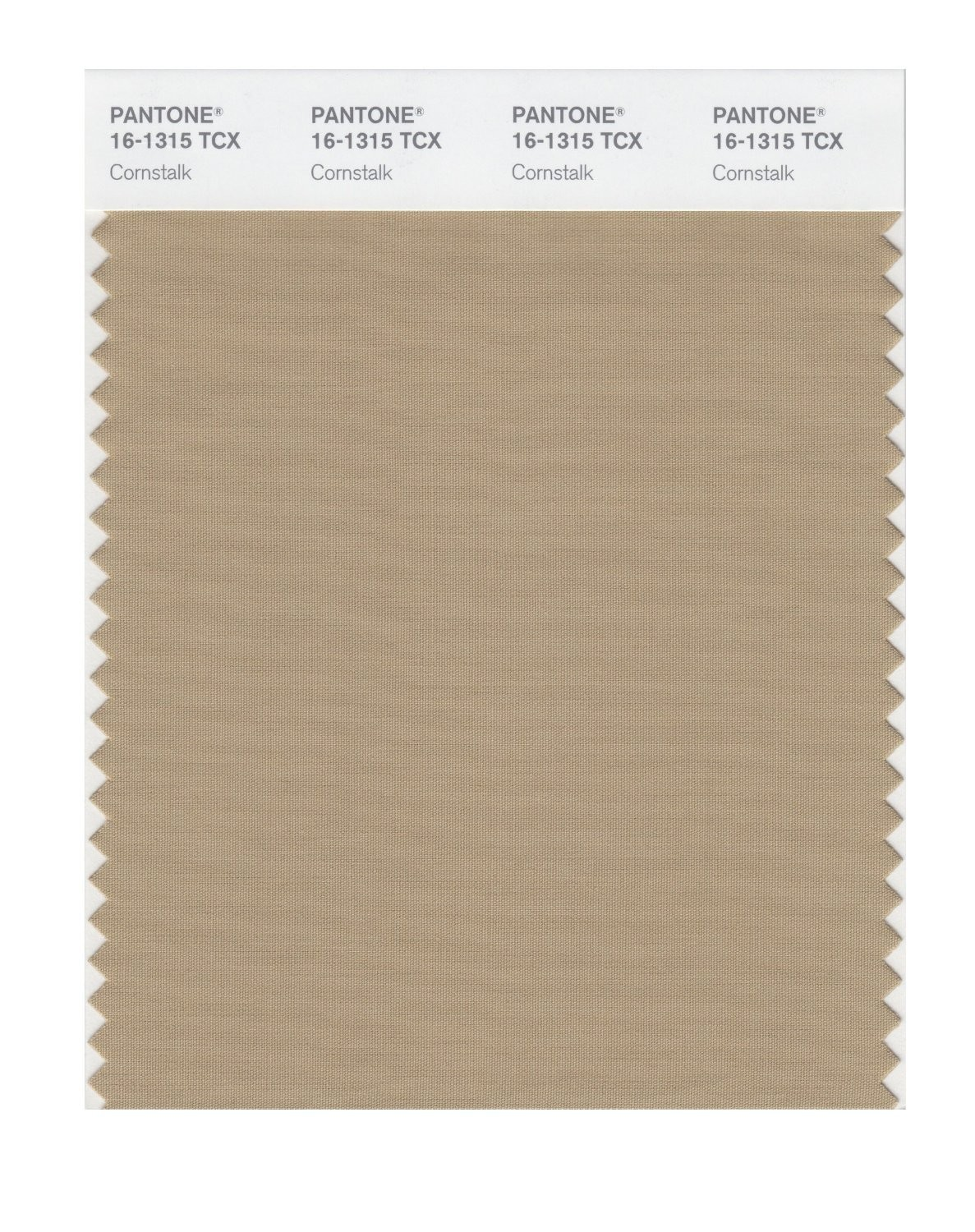 Pantone 16-1315 TCX Swatch Card Cornstalk