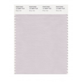 Pantone 13-3804 TCX Swatch Card Gray Lilac