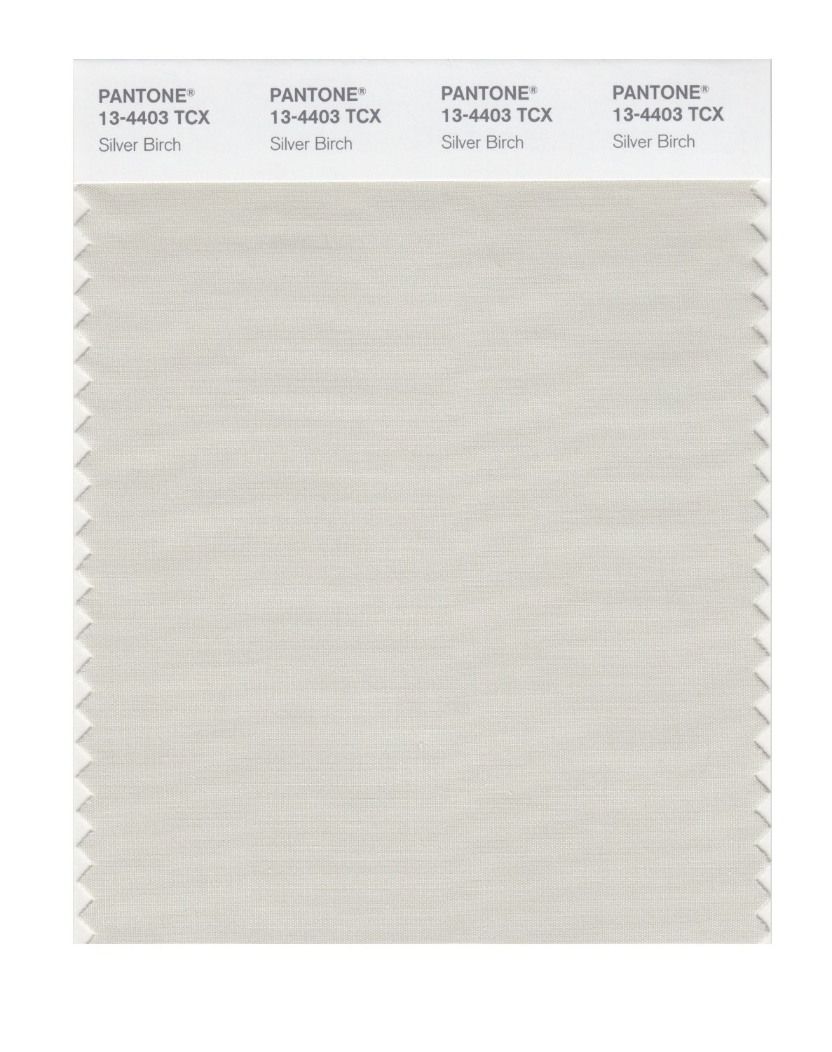 Pantone 13-4403 TCX Swatch Card Silver Birch