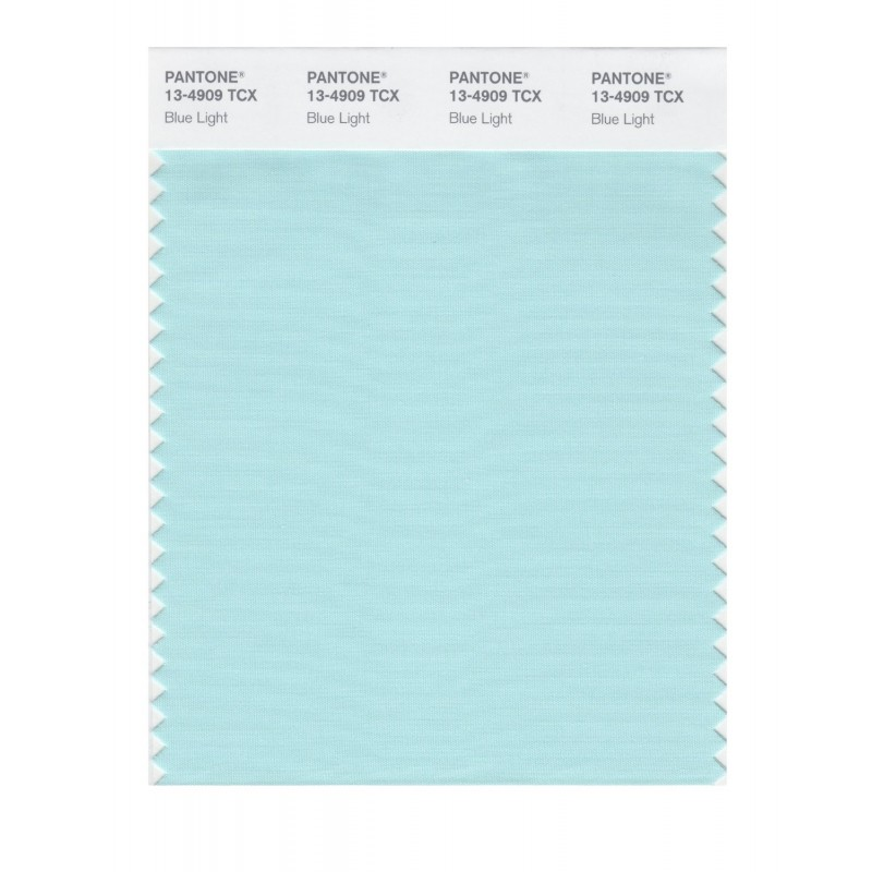 Pantone 13-4810 TCX Swatch Card Limpet Shell