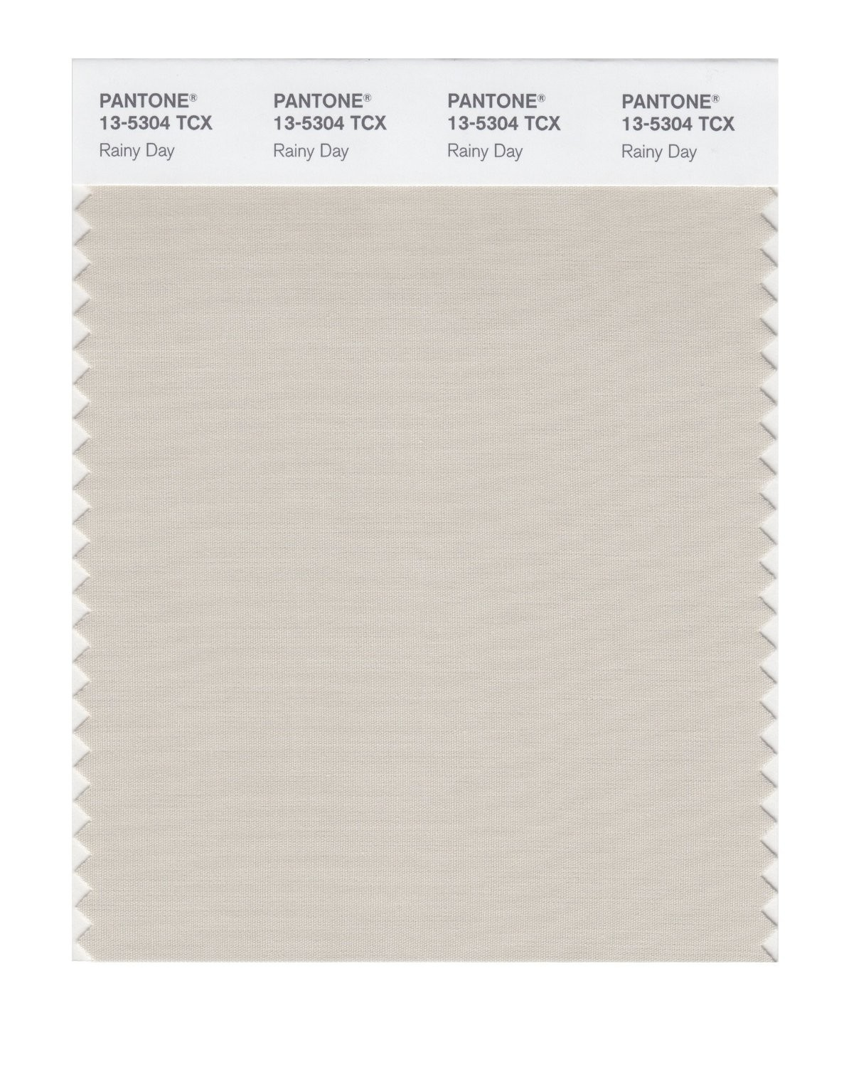 Pantone 13-5304 TCX Swatch Card Rainy Day
