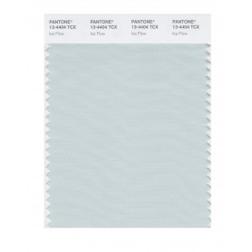 Pantone 13-4404 TCX Swatch Card Ice Flow