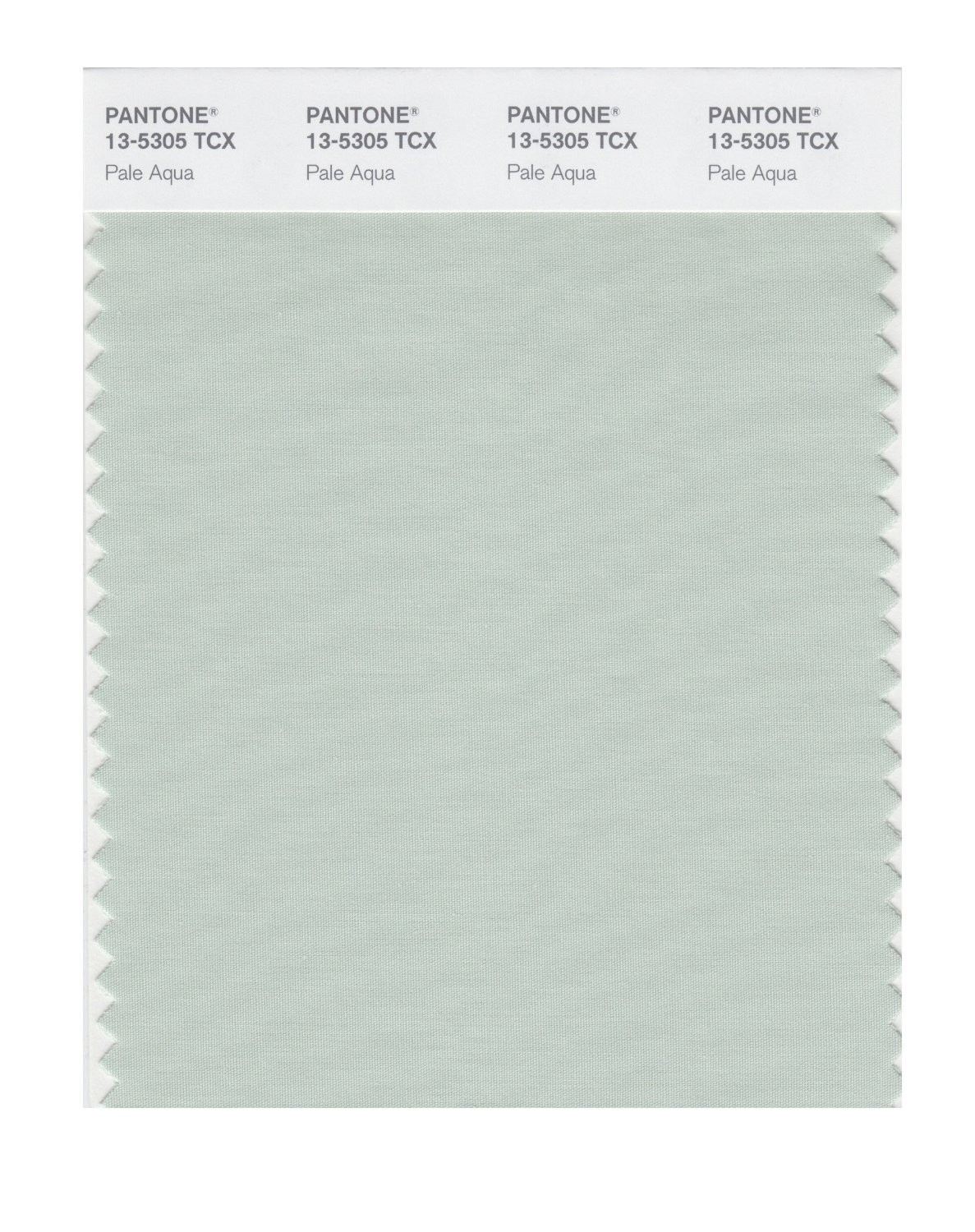 Pantone 13-5305 TCX Swatch Card Pale Aqua