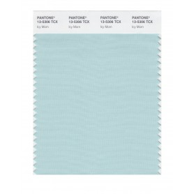 Pantone 13-5306 TCX Swatch Card Icy Morn