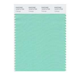 Pantone 13-5714 TCX Swatch Card Cabbage
