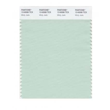 Pantone 13-5911 TCX Swatch Card Bird's Egg Green