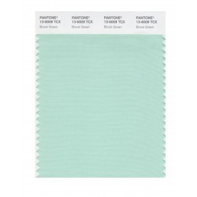 Pantone 13-6009 TCX Swatch Card Brook Green
