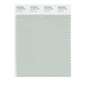 Pantone 13-6107 TCX Swatch Card Green Lily