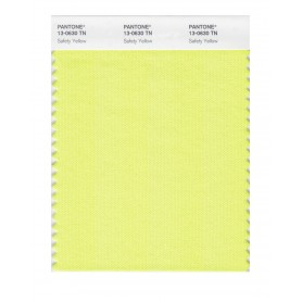 Pantone 13-0630 TN Safety Yellow Nylon Brights Swatch Card