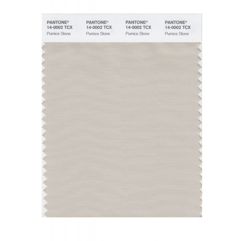 Pantone 14-0000 TCX Swatch Card Silver Gray