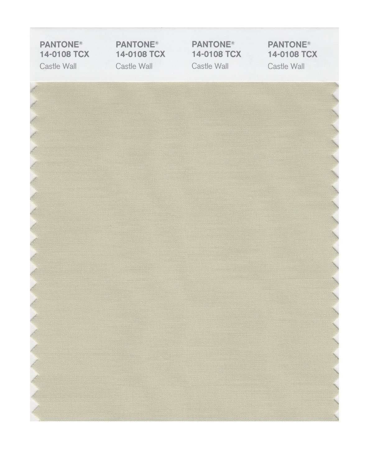 Pantone 14-0108 TCX Swatch Card Castle Wall